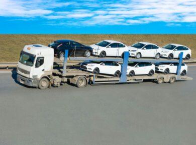 Plusieurs voitures qui sont transportées au port de la martinique