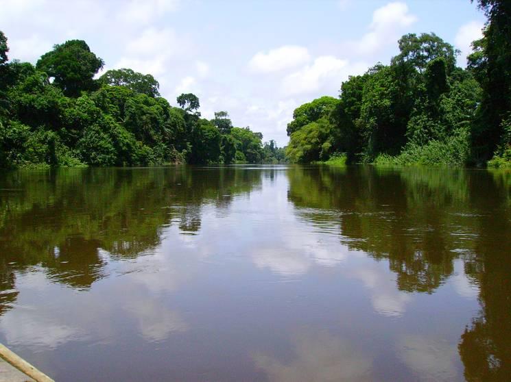 Paysage fleuve Cameroun